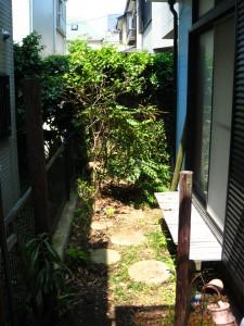 坪庭と黒シバと私
