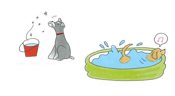 「愛犬🐶とお庭を楽しむために」point4