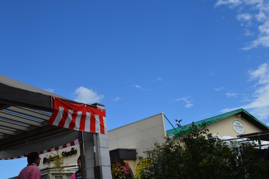 風にも負けず、ガーデニング祭開催中!
