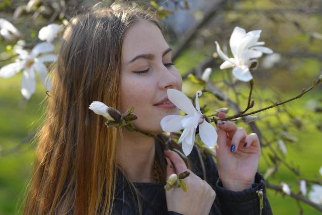 表面 木の香り
