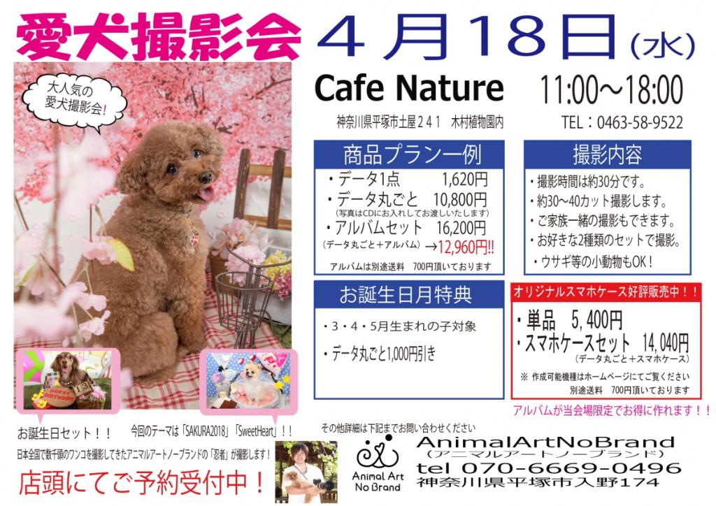 4月18日CafeNature チラシ