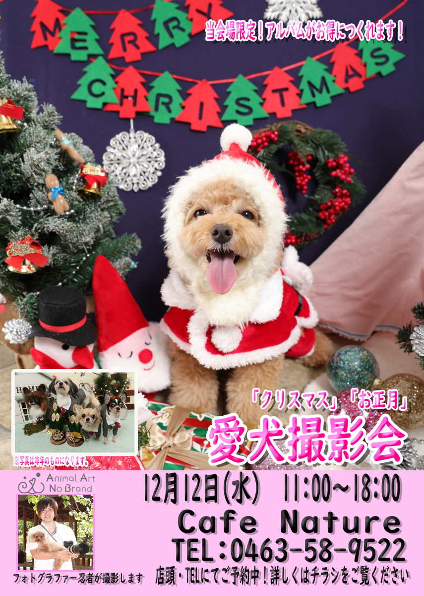 12月12日Cafe Nature様re