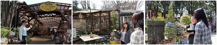 写真:木村植物園内
